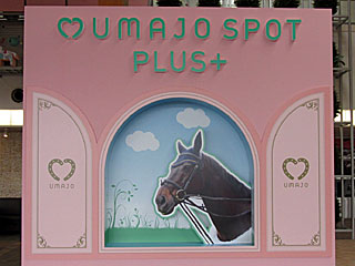 UMAJO SPOT PLUS