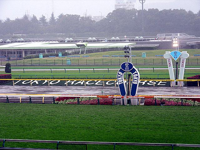 東京 競馬 場 台風