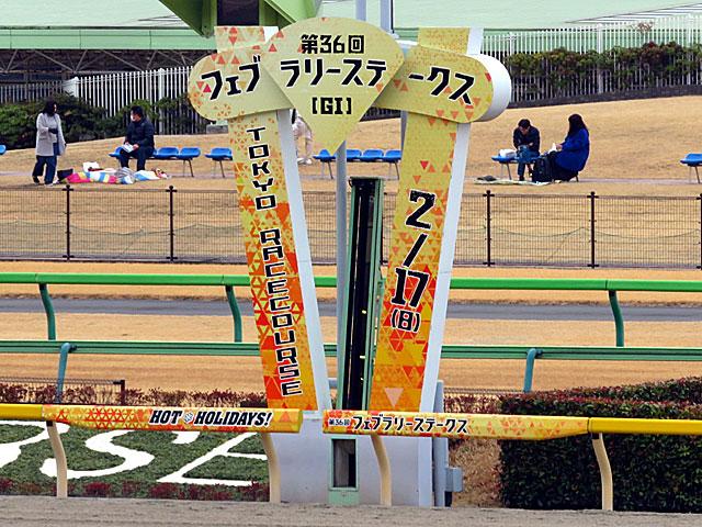 フェブラリーステークス | 2019年2月17日の競馬日記 | 東京競馬場 ...